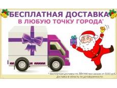 Бесплатная доставка при по Москве!
